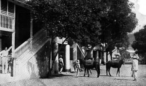 Baños de Coamo 1900
